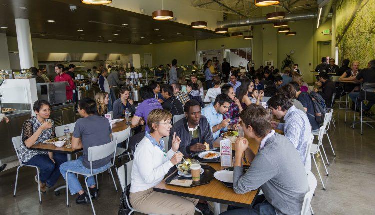 Google Howard West program faced disorganization, culture clashes