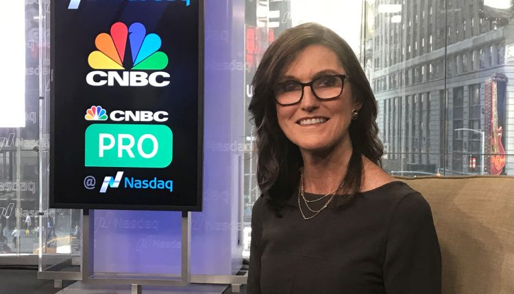 Cathie Wood says the underlying bull market is strengthening and