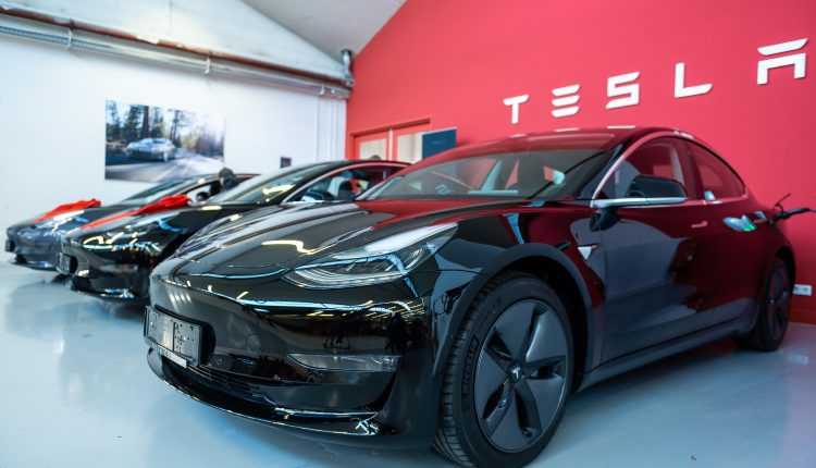 Cathie Wood's Ark Innovation Fund rebounds 8% Tuesday as Tesla,
