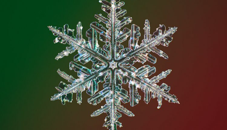 Photos of Snowflakes Like You've Never Seen Them Before