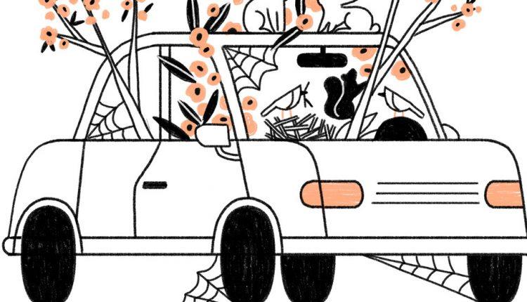 Car Maintenance During the Pandemic