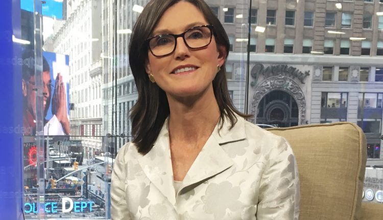 Cathie Wood loves the setup for her stocks after sell-off,