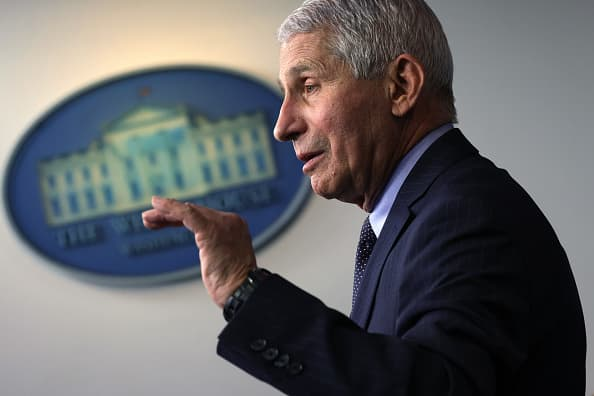 Fauci says 'no red flags' seen in 10,000 pregnant women