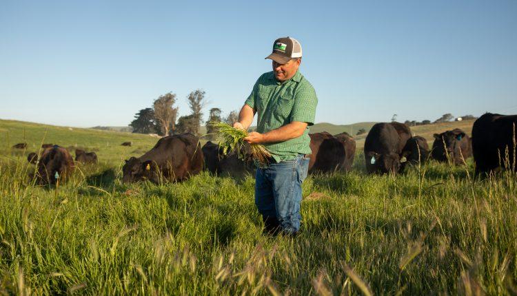 Pay farmers to cut carbon footprint