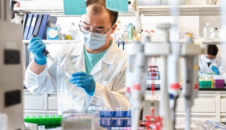 Study shows promising immune response against variants