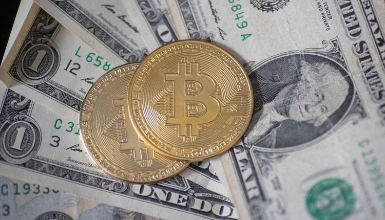 13% of Americans traded crypto in the past year, survey