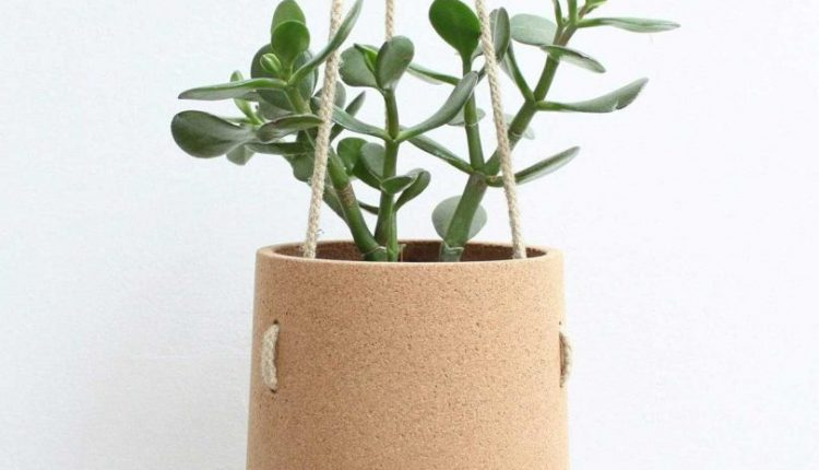 6 Hanging Planters so You Can Bring the Outdoors In